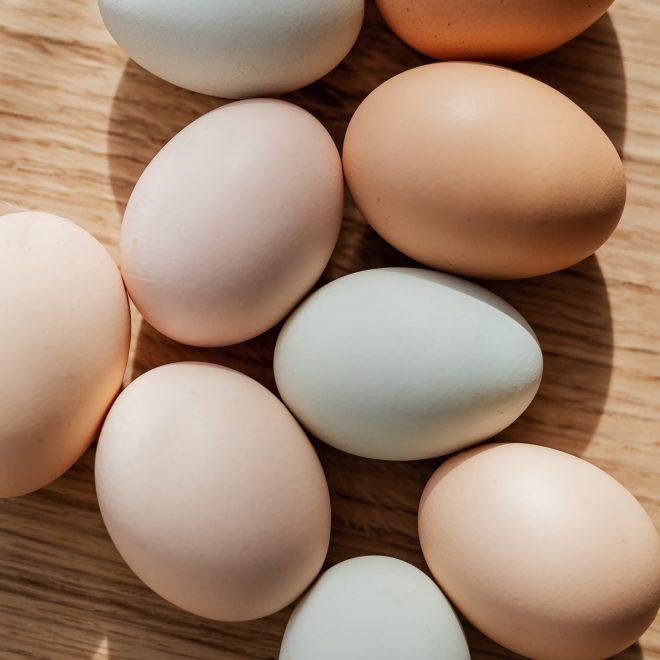 Verschil tussen witte en bruine eieren